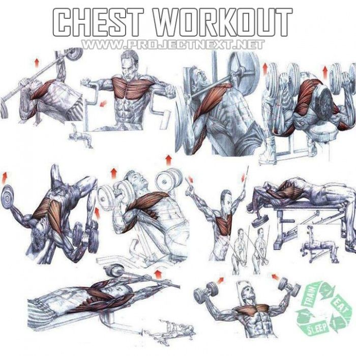 Chest Workout - Healthy Fitness Exercises Gym Bench Press ...
