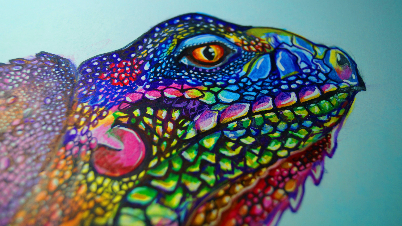 Dorable Lagarto De Dragón Barbudo Para Colorear Ilustración - Ideas ...