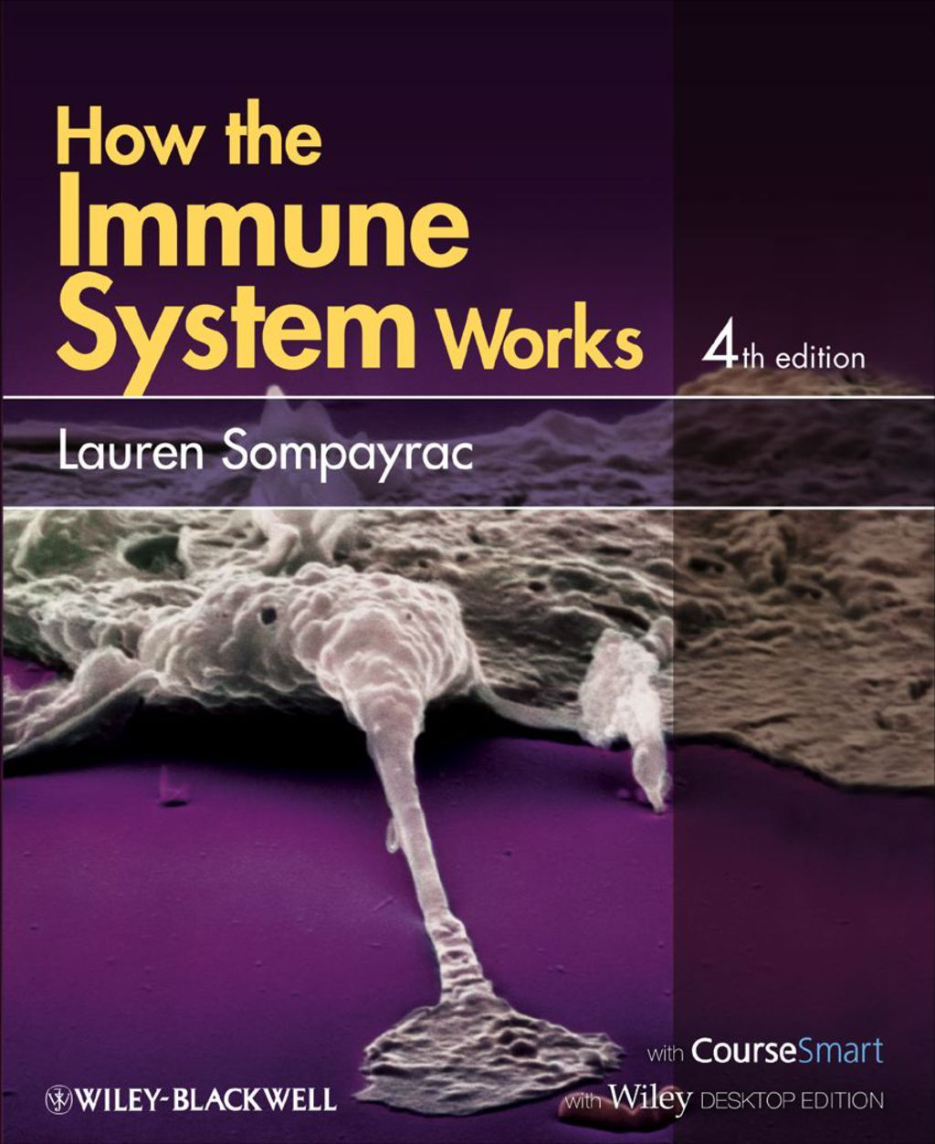 How The Immune System Works Ebook With Images