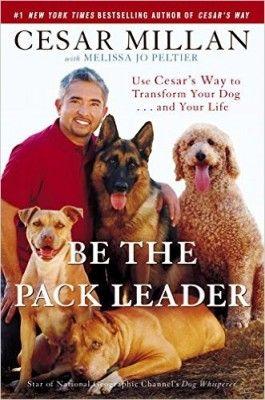 Be The Pack Leader Pdf Positive Dog Training Dog Training Books