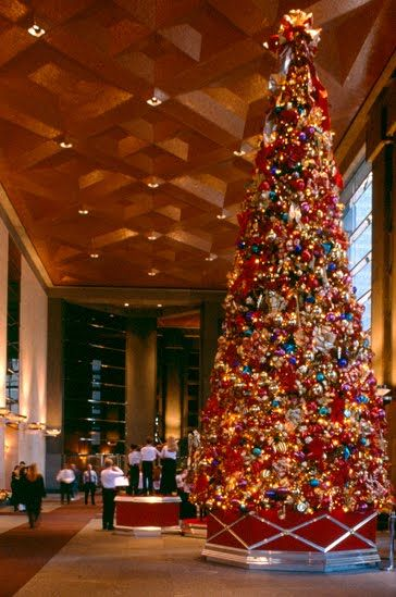 I Like How The Tree Base Echo S Design Of Beautifull Ceiling