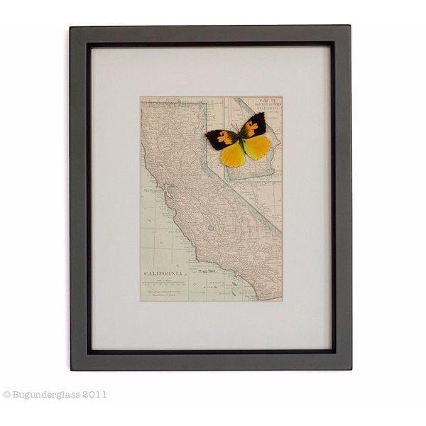 Old Vintage Map of California 1910 With Real Framed State Butterfly ...