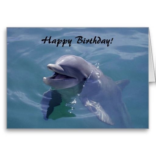 3 pk Ocean Friend Happy Birthday Party  Lunch Napkins Sea Luau Mermaid Fish