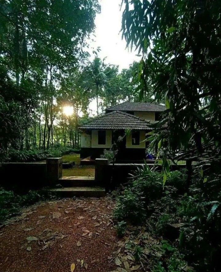 Pin by ആമി on Kairali in 2020 Village house design