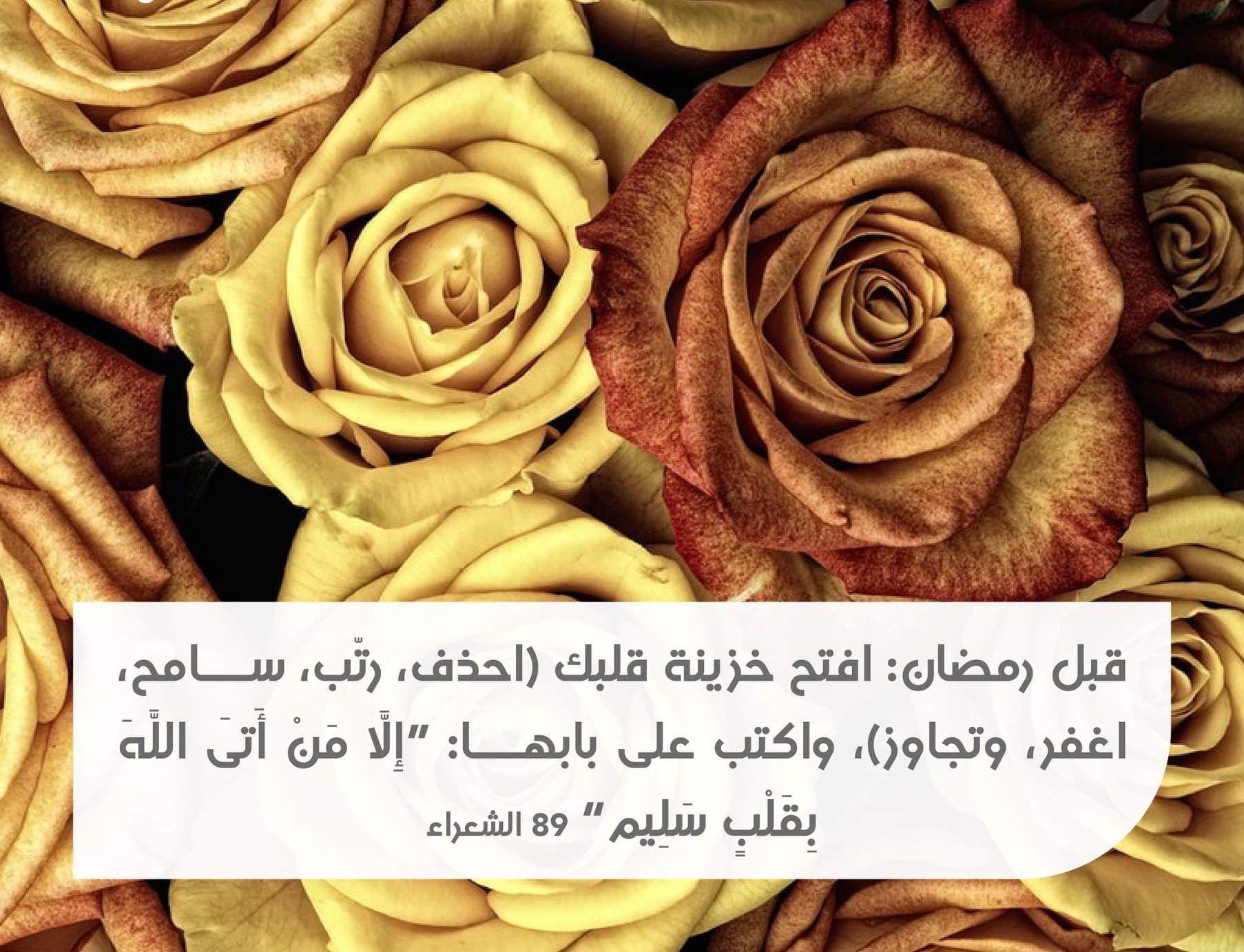 Pin By Shh5 On رمضان كريم Ramadan Kareem Qoutes Plants Rose