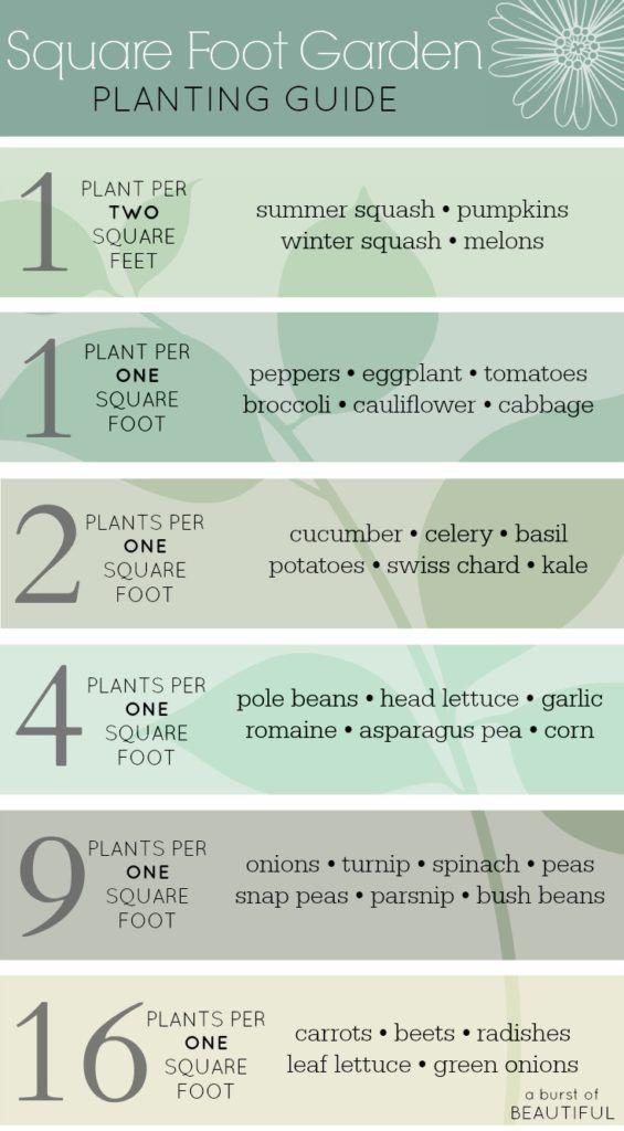 Planning a Vegetable Garden – Square Foot Garden Planning Tool