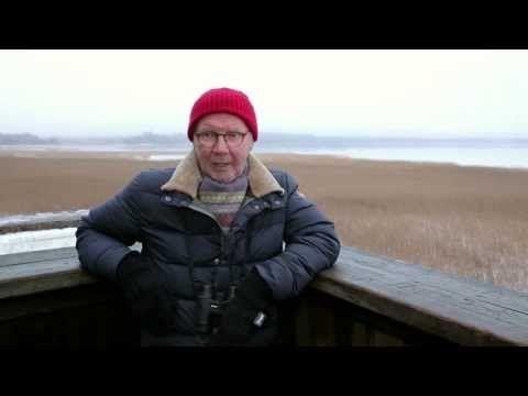 Pirkka-Pekka Peteliuksen vinkit lintujen talviruokintaan - YouTube