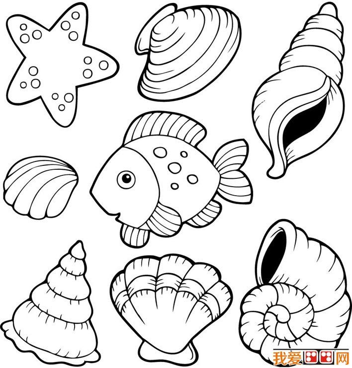 Free coloring pages of is shell templates pinterest for Shells coloring page
