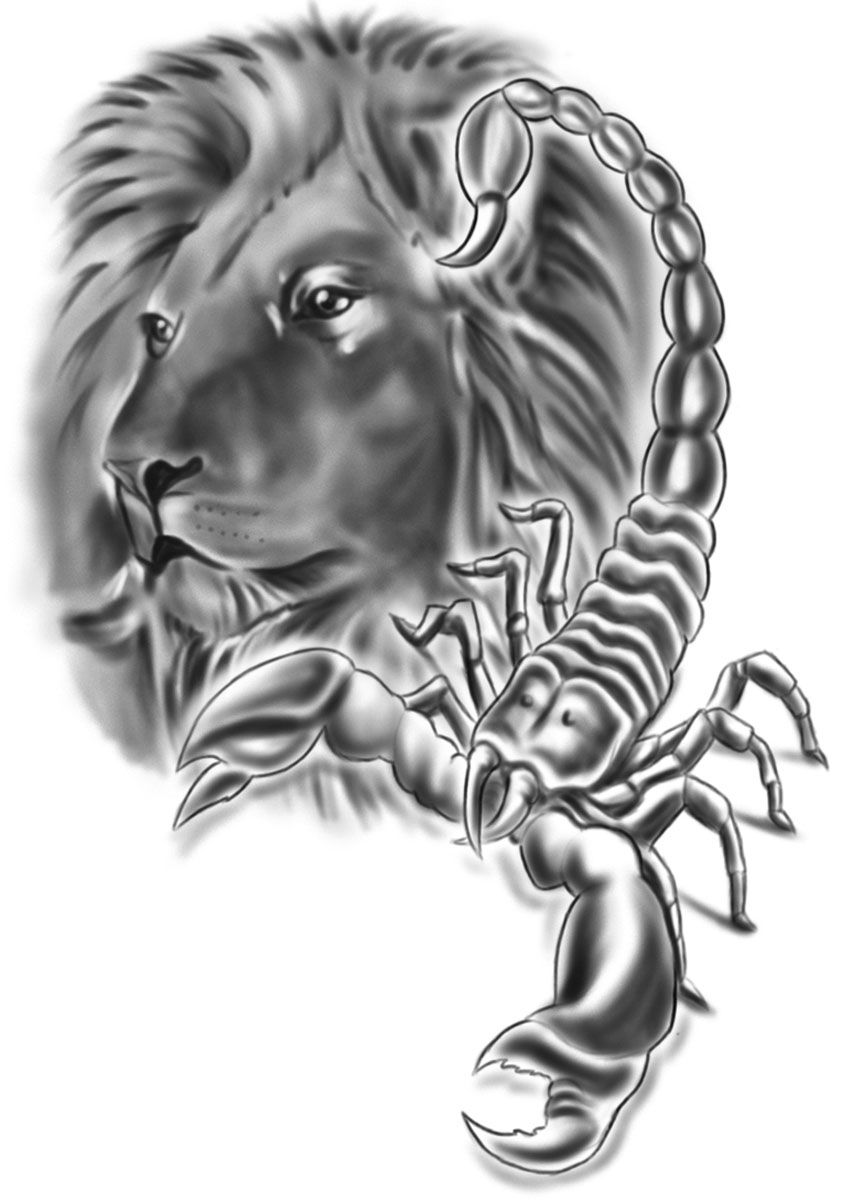 lion scorpion tattoo tattoo concept artwork pinterest scorpion lions and tattoo. Black Bedroom Furniture Sets. Home Design Ideas