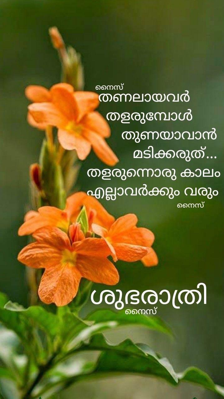 Pin on Good Night ( malayalam )