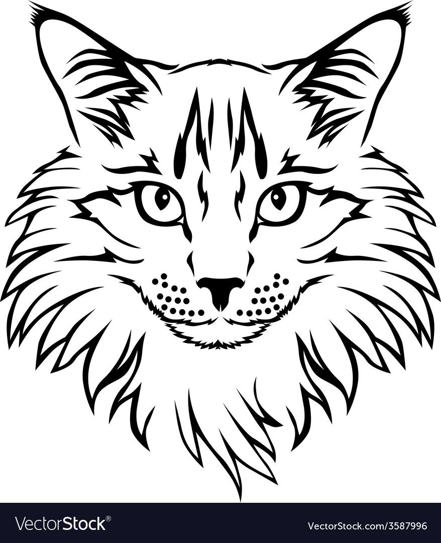 Contour Furry Cat Portrait Download A Free Preview Or High Quality Adobe Illustrator Ai Eps Pdf And High Resolution Jpeg Cat Tattoo Cat Portraits Cat Furry