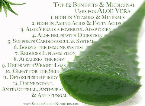 Aloe Vera Is An Antioxidant And Cancer Fighter Especially Colon Cancer Reduces And Stops Inflammation Both Interna Aloe Vera Aloe Vera Uses Aloe Vera Juice
