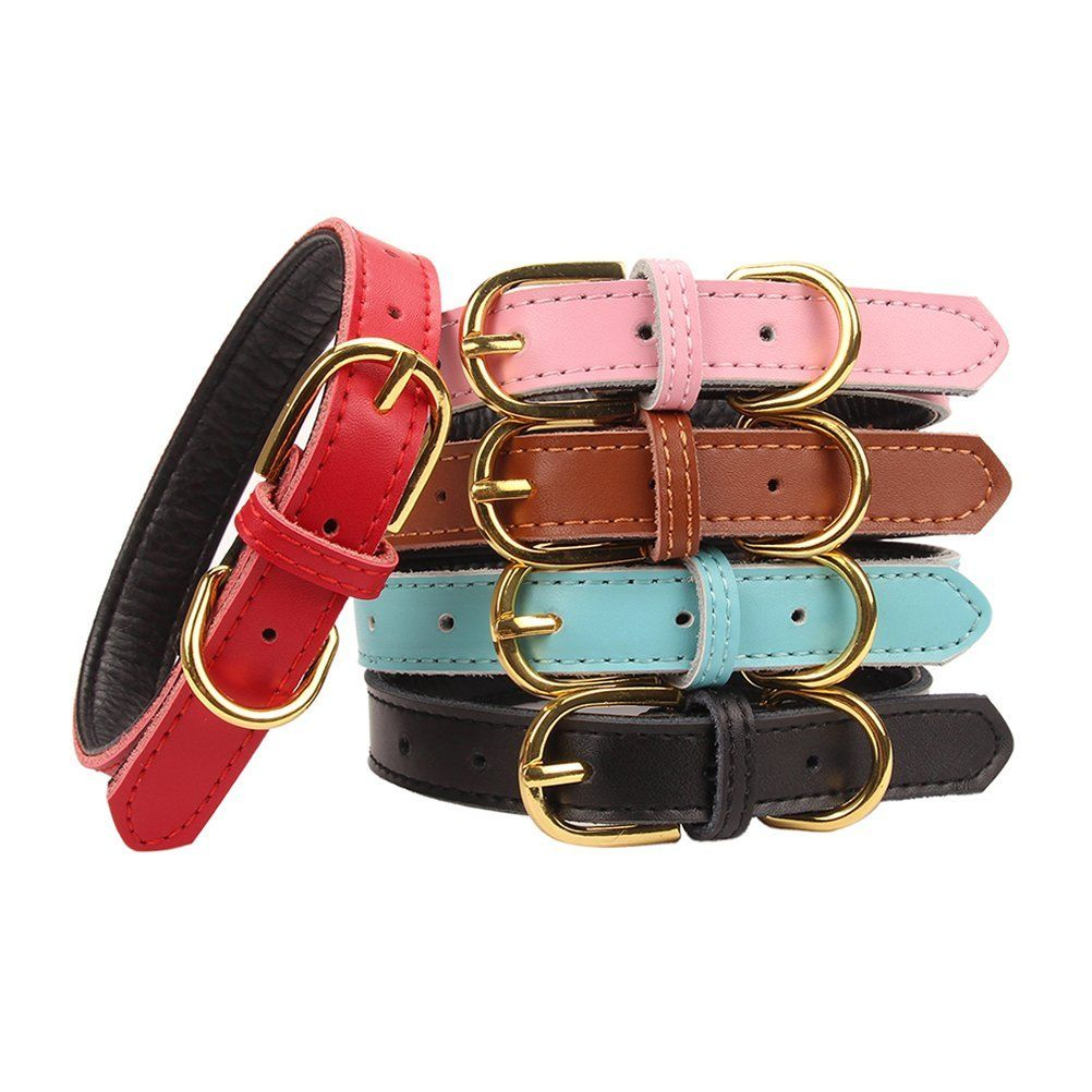 Aolove Basic Classic Padded Genuine Leather cat Collars