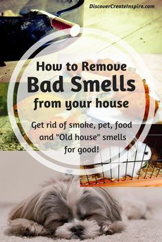 How To Remove Odors And Clean The Air In Your House Naturally And  Permanently, Deodorize Naturally, Clean Smoke Smell Out Of House