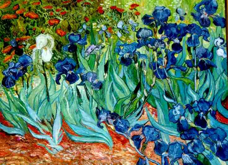 Van gogh iris iris 1889 a place of values for Van gogh irises