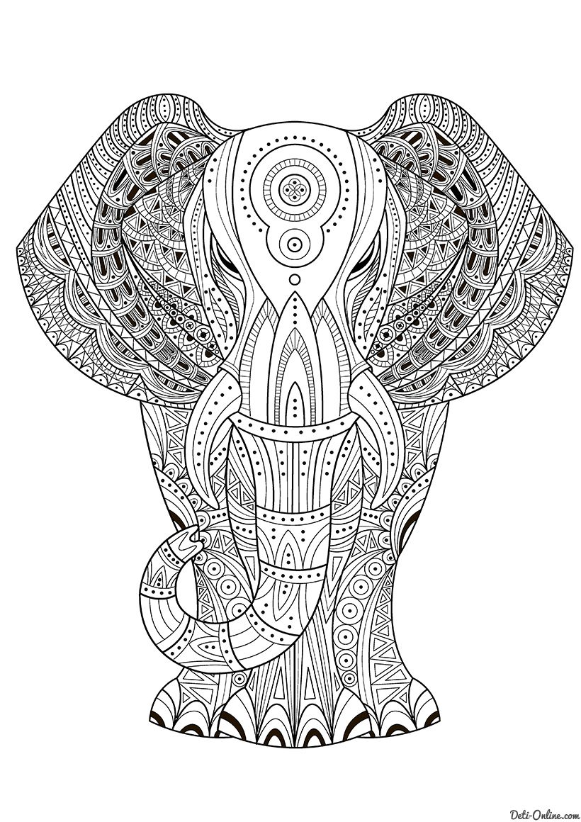 раскраска индийский слон распечатать или скачать