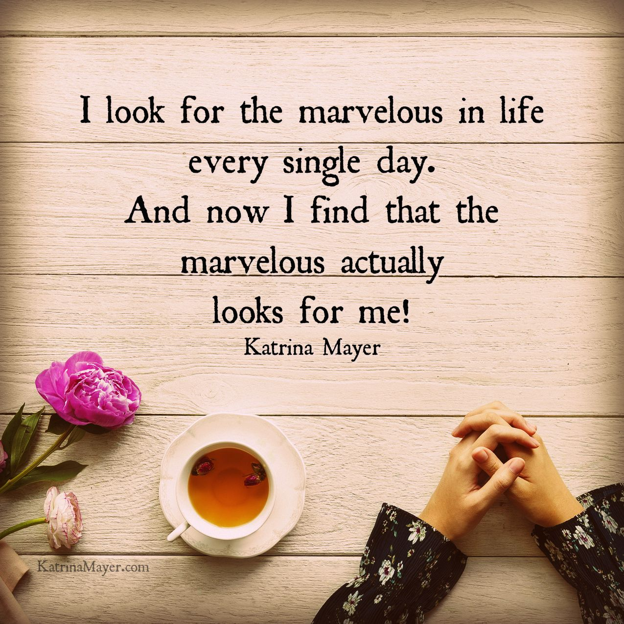 I Look For The Marvelous Every Single Day And Now It