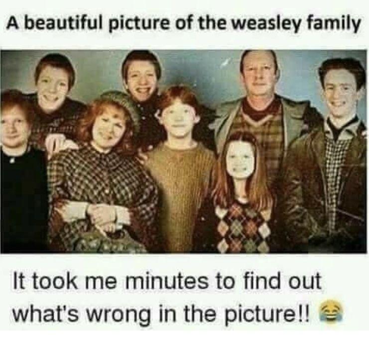 Ed Sheeran Weasley Ed Sheeran Book Memes Funny Memes