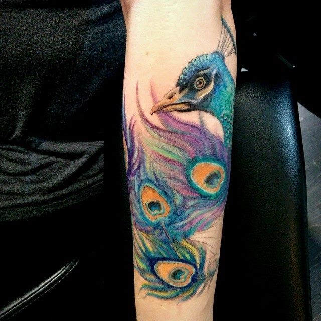 Chronic Ink Tattoo - Toronto Tattoo Water colour peacock tattoo in progress by Miss Lee.