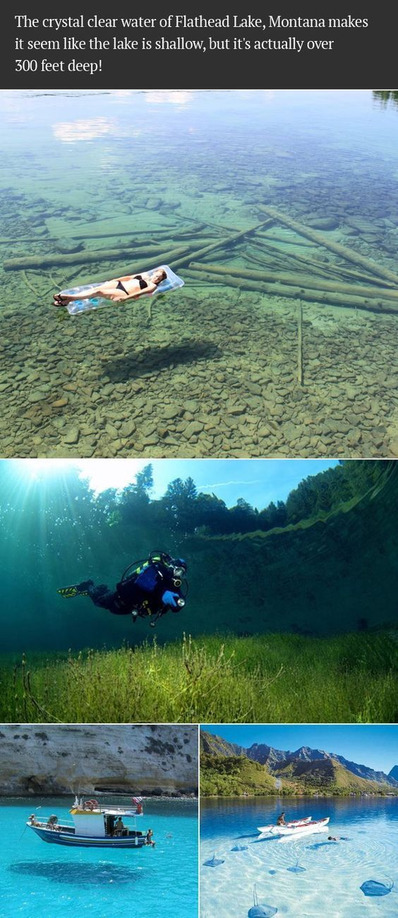 Das kristallklare Wasser des Flathead Lake, Montana  #flathead #kristallklare #montana #wasser, #selfwatering