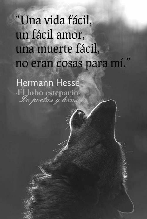 Wolf quotes image by Miguel Mazzetti on Frases Wolf