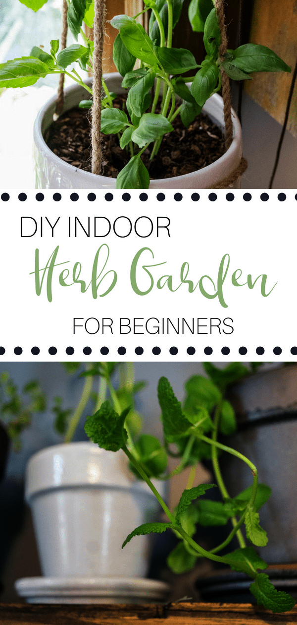 Gardening Gifts Near Me Out Gardening For Beginners Balcony