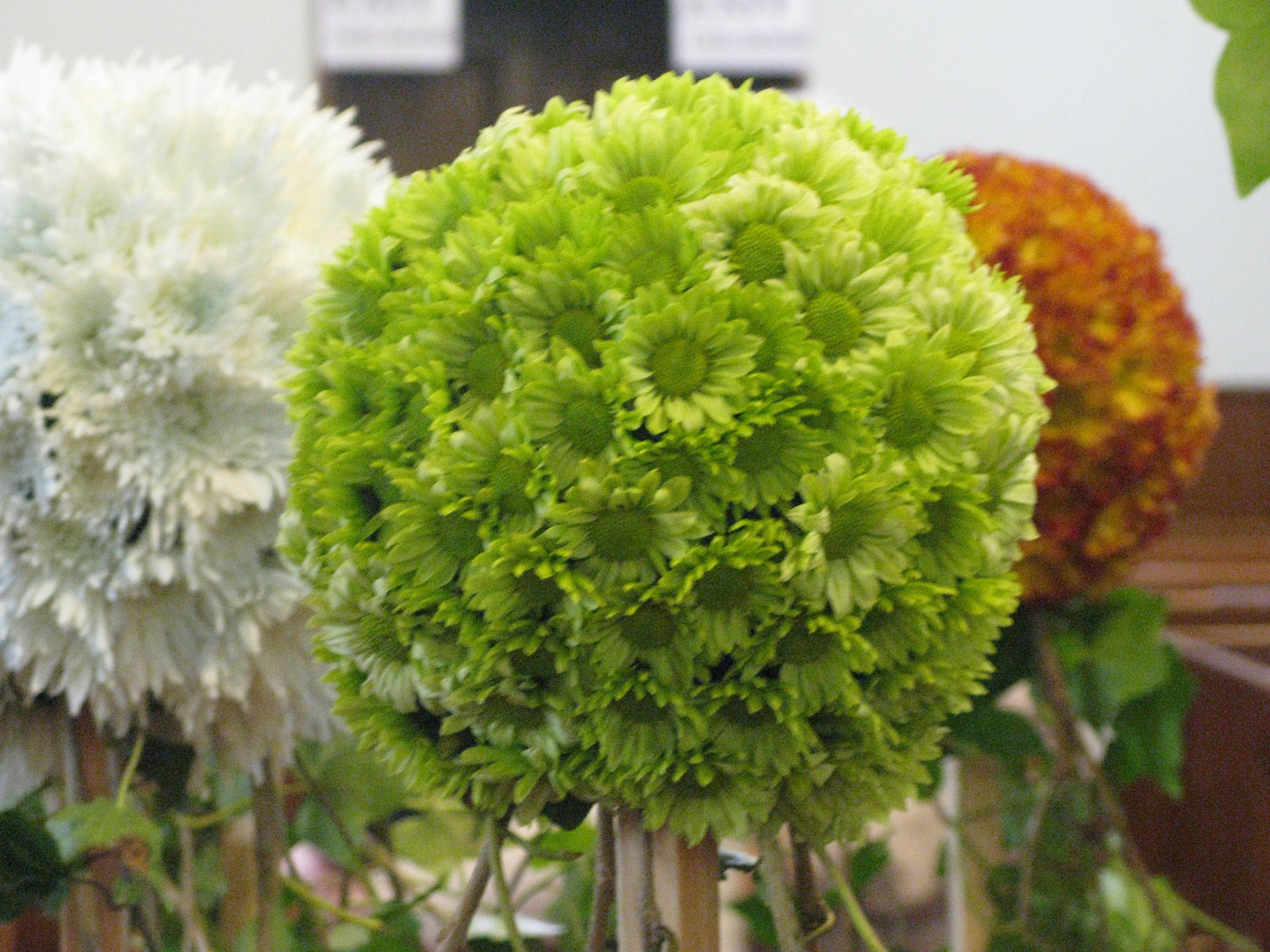 Chrysanthemum balls made using round oasis floral foam