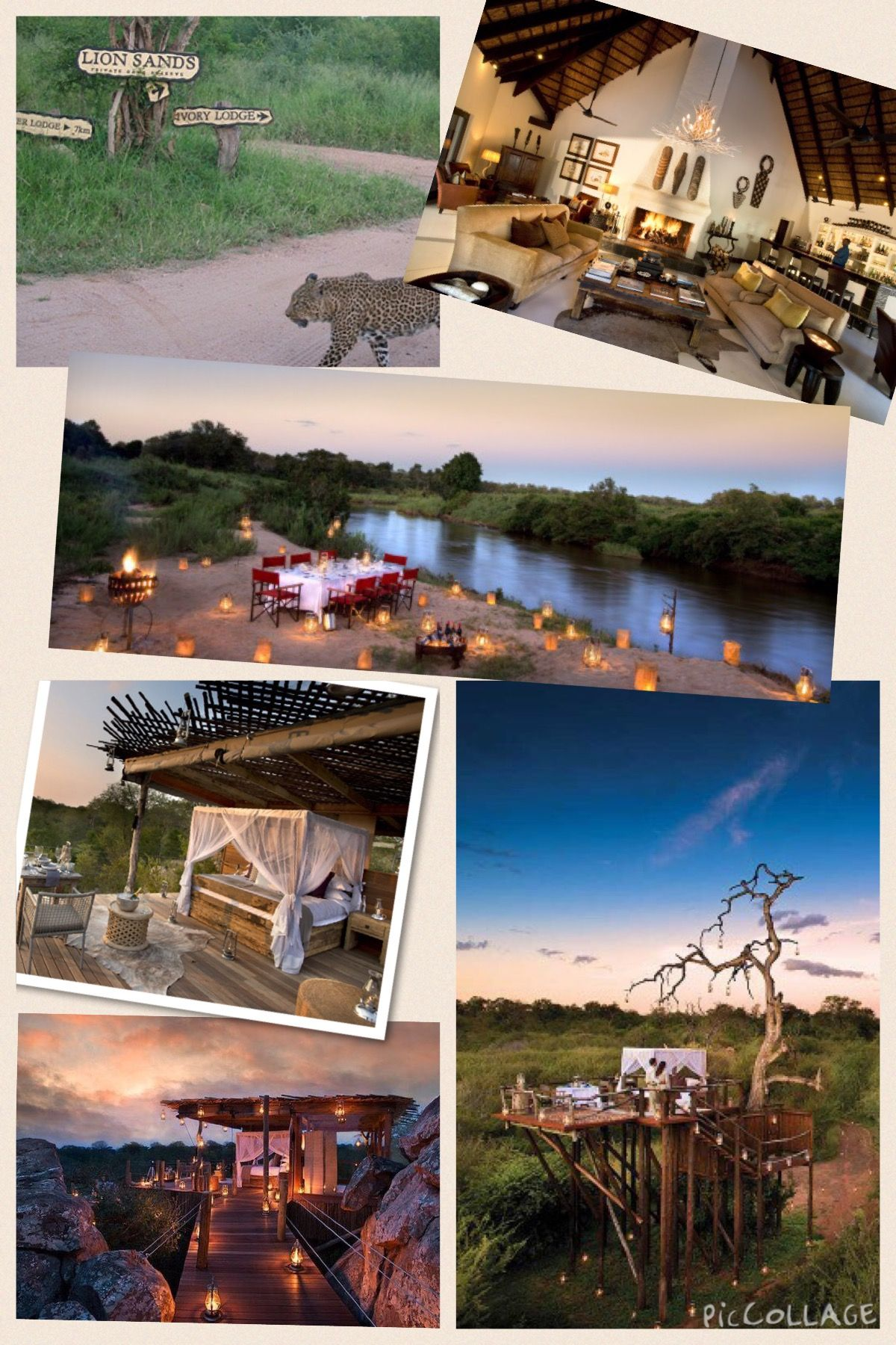 44++ Lion sands game reserve hotel ideas in 2021