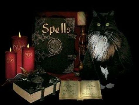 Do you want to make money?+27731356845 PROF MAMA JAFALI Order money spells Today & opens the doors of wealth & untold riches in your life. If you are serious about making money, order traditional money spells & wealth spells. How much money do you want to make? How much money do you want to win in the lottery? How much money do you want to win at the casino? Do you want a debt free life? If you want to make money find a money spell & become rich. Money is  #gethimbackarticles #moneyspells