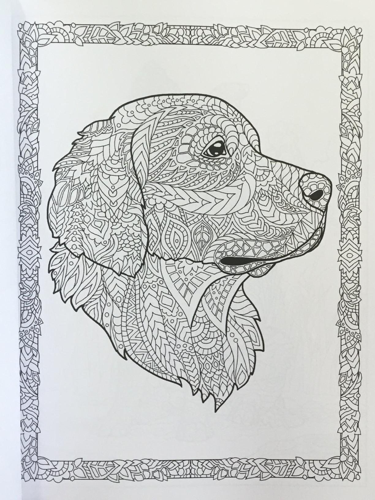 Doodle Dogs Coloring Book For Adults Happy Coloring Amanda Neel Dog Coloring Book Dog Coloring Page Animal Coloring Pages [ 1632 x 1224 Pixel ]