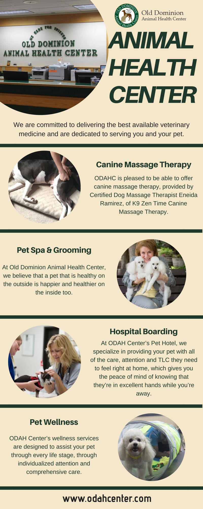 Odah Center Staff Is Committed To The Health Of Your Pets To Enjoy Long Happy And Healthy Life We Offer All Othe Modern Ameni Dog Vet Care Pet Vet Pet Health