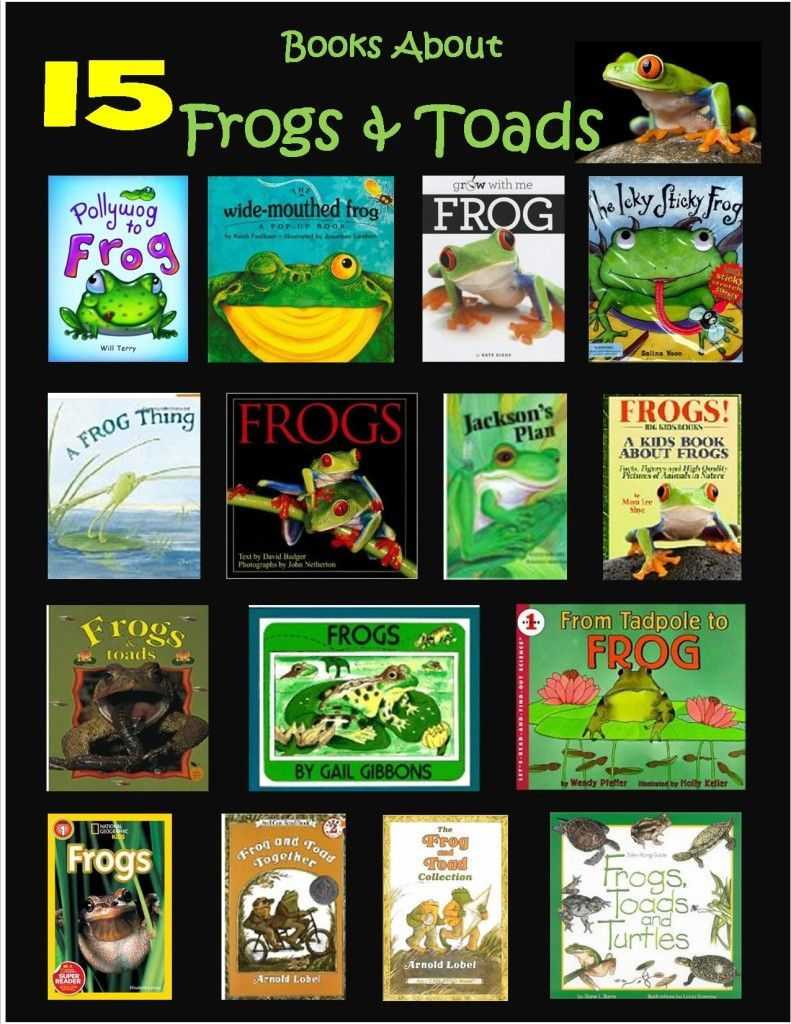 Short Tex tale yo rose and toad 73