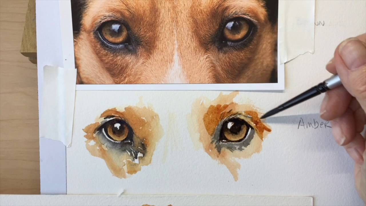How To Paint A Dog S Amber Eyes Painting Tutorial Watercolor