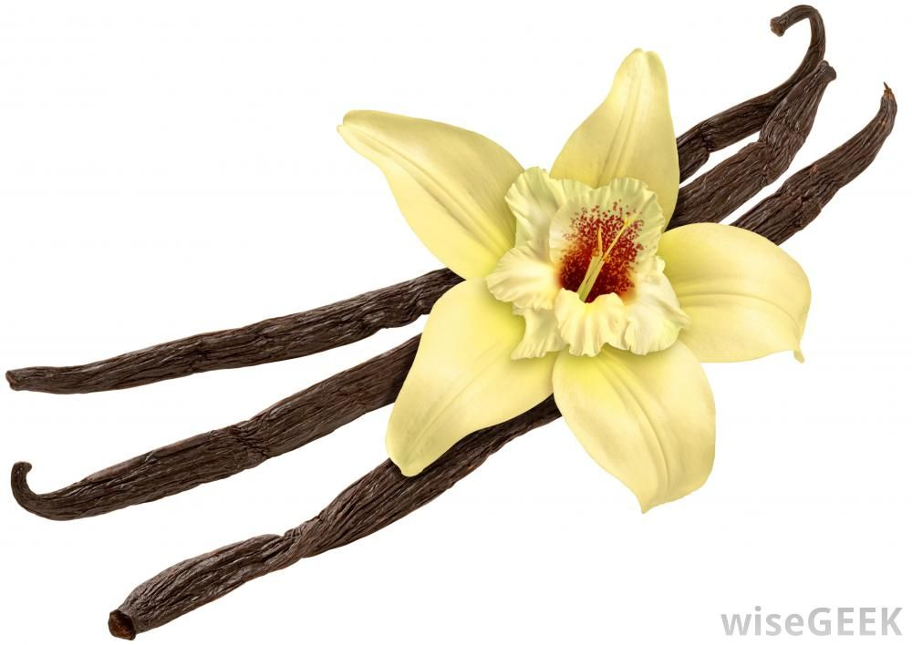when you choose your vanilla beans, be sure to get the ...