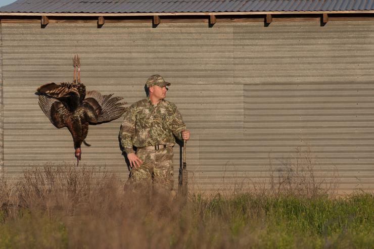 How to Turkey Hunt Turkey hunting, Types of hunting, Hunting