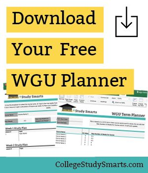 create the perfect wgu study plan online college student online