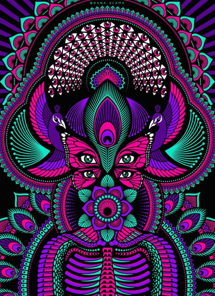 Psychedelic Trippy Nature Mandala Peacock Butterfly Flower