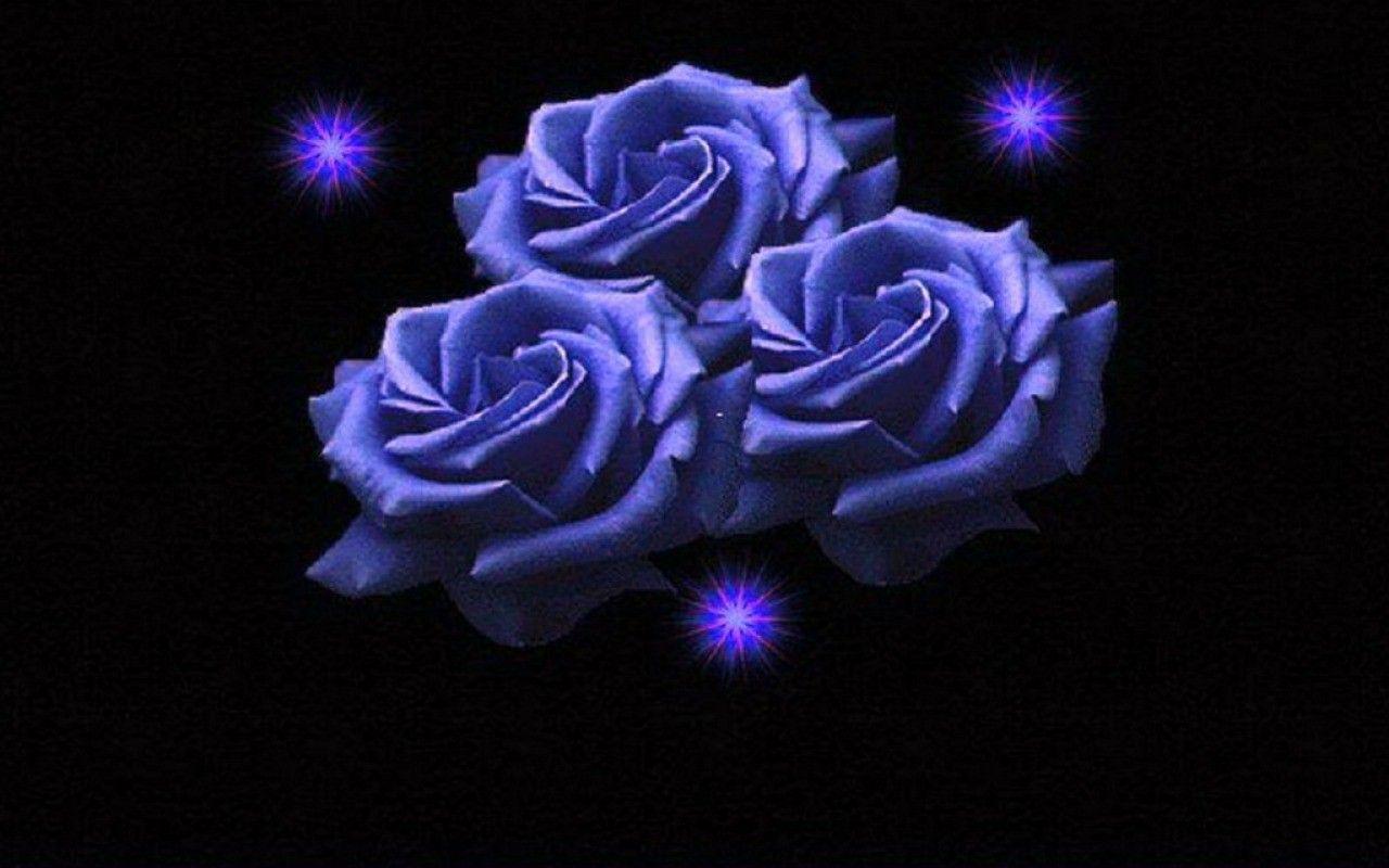 Renatures Com Nature Roses Rose Blue Fantasy Flowers Flower Wallpaper Ios 7 Flower Wallpaper Fantasy Flower Rose