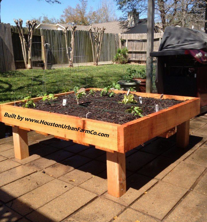 059479f3ece5c994bbd8e759cb7b7d7a - Square Foot Gardening In The Ground