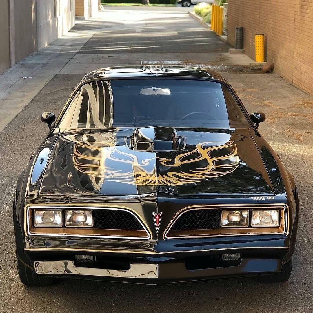 10+ Best Electric and Hybrid Cars Sport, SUV, Luxury, Sedan (Definition) » Anvil Magazine