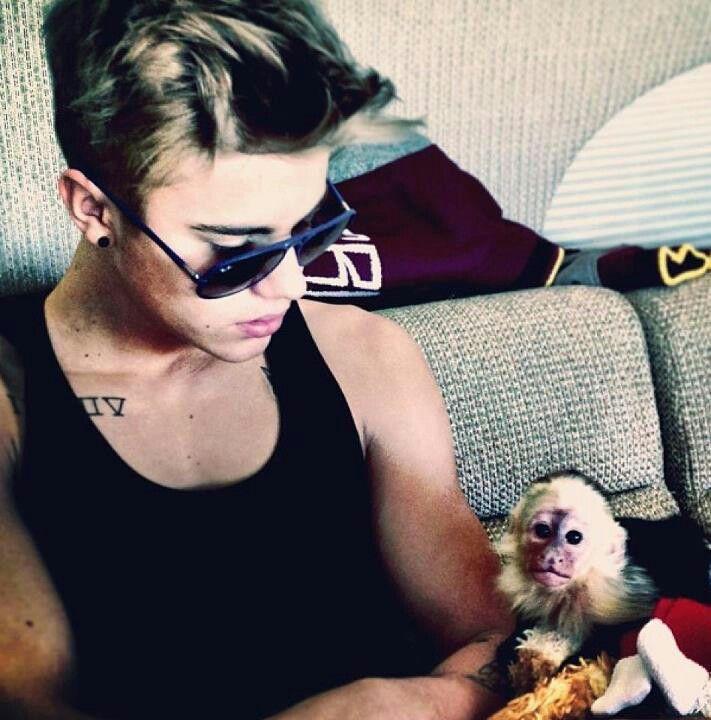 ok that monkey is sooooo cute!!!!