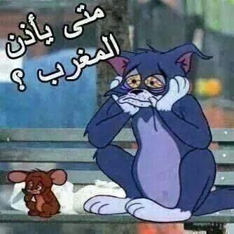 رمضان Arabic Funny Funny Arabic Quotes Funny Qoutes