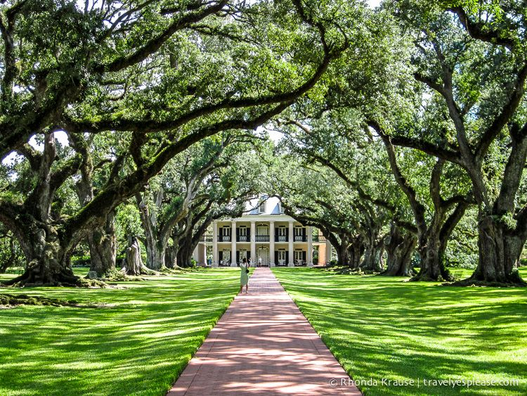 Photo of the Week Oak Alley Plantation, Louisiana