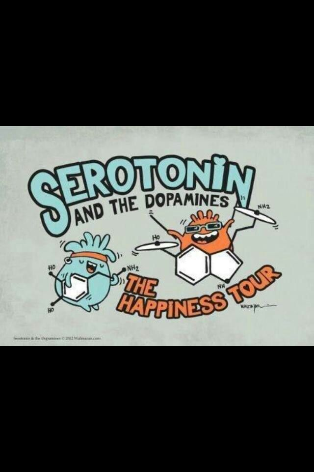The happiness tour. If this were a tshirt I would totally wear it
