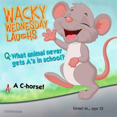 Wacky Wednesday Wacky Wednesday Jokes For Kids Wednesday Humor