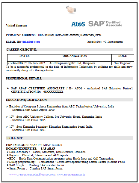 resume template of a sap certified professional with great