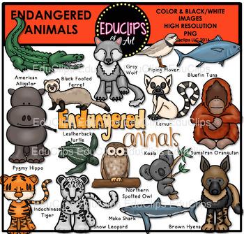 Endangered Animals Clip Art Bundle Educlips Clipart Endangered Animals Art Bundle Endangered