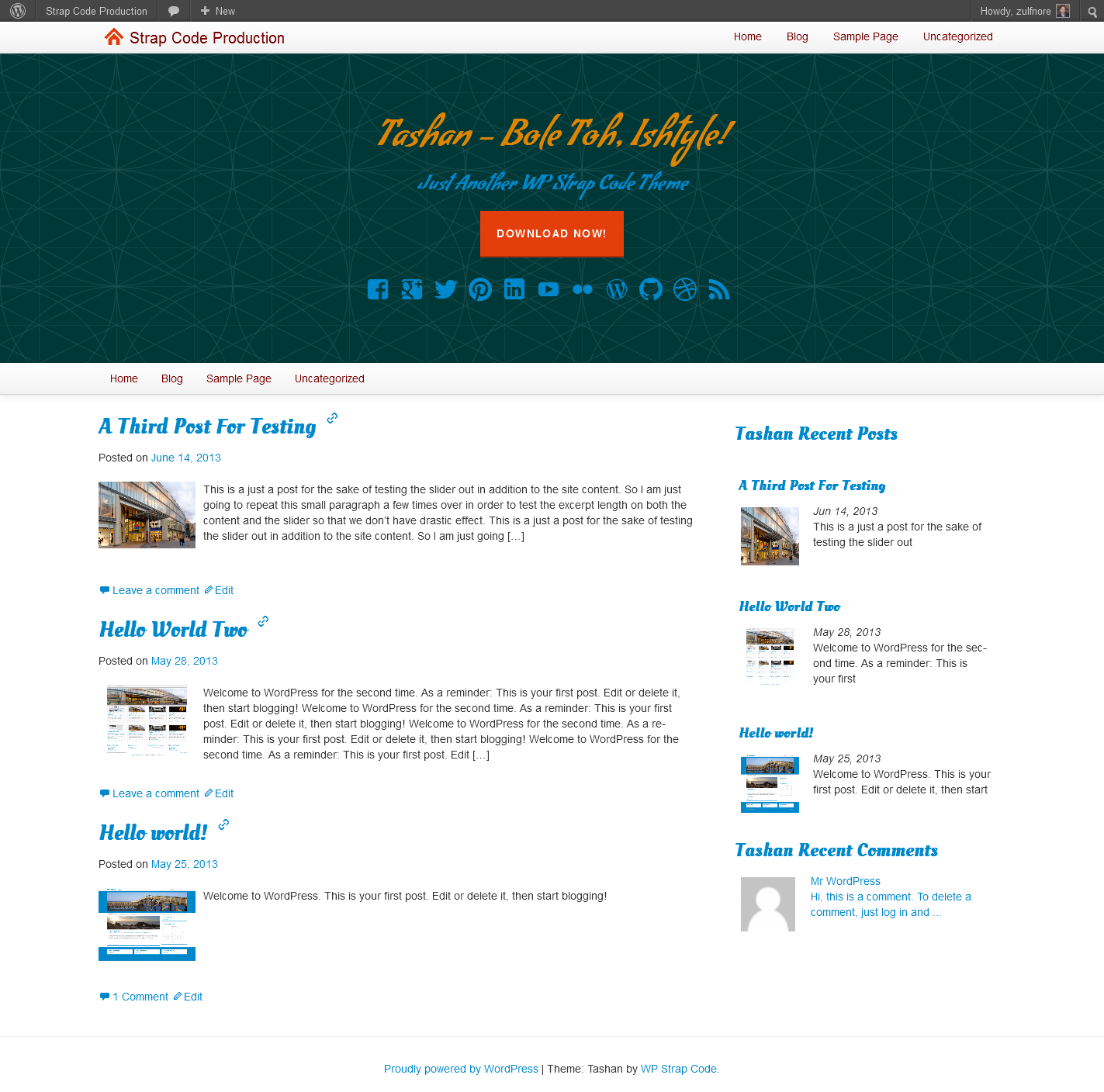 This free parallax WordPress theme offers social media icons, recent ...