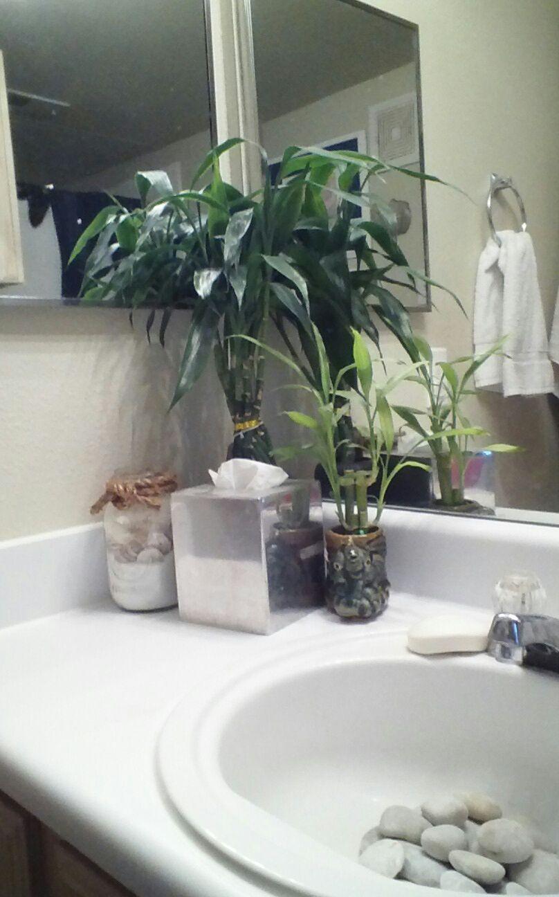 Diy Bathroom Project I Got This Idea At My Hair Salon Buy A Bag