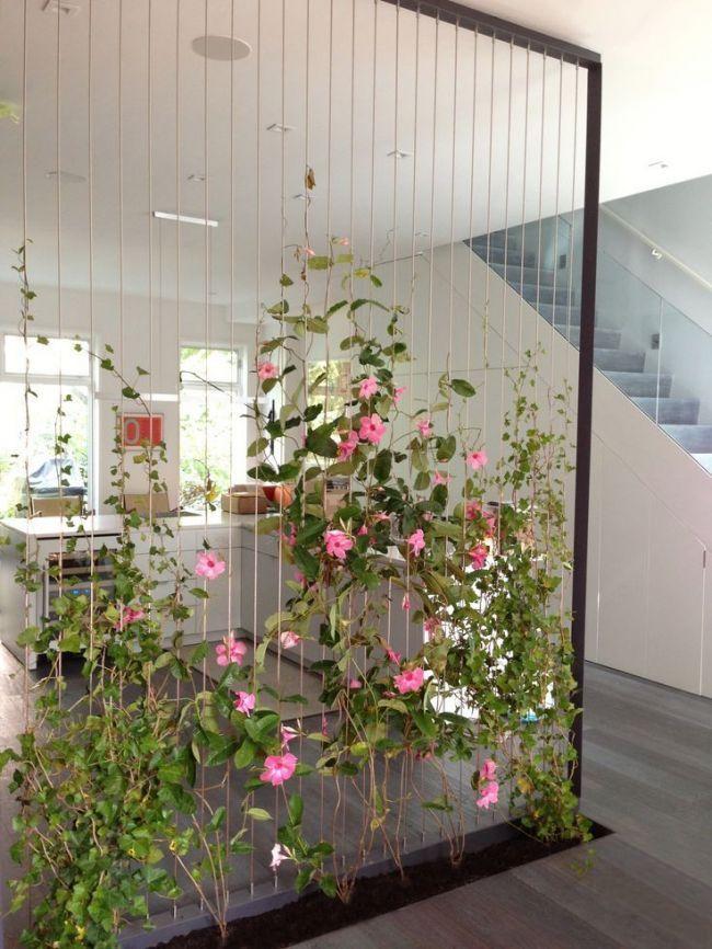 Ob beim Coworking oder im Großraumbüro: Ein Raumteiler mit Pflanzen ist ein Hi, # Coworking #balkonideen